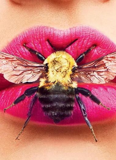 Какая муха тебя укусила?