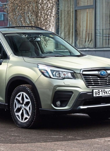 Subaru Forester: его лесничество