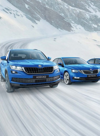 Skoda Hockey Edition