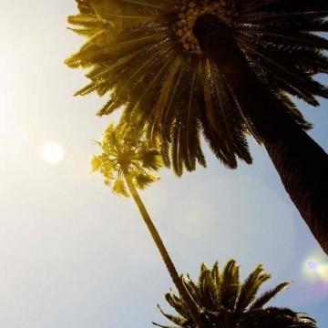 По имени солнце