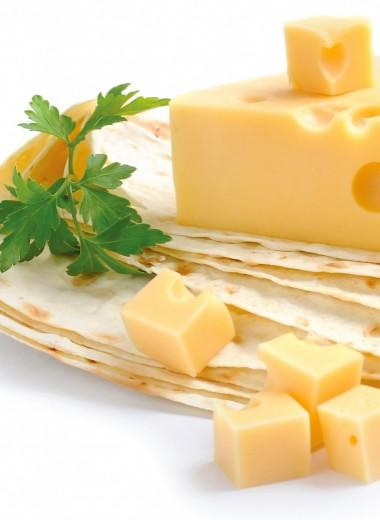 Выбираем сыр!