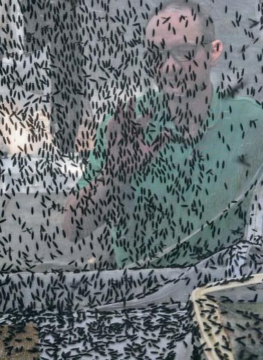 Повелитель мух, или Чем архангельский мужик впечатлил компанию Билла Гейтса