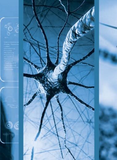 Искусственный интеллект на грани нервного срыва