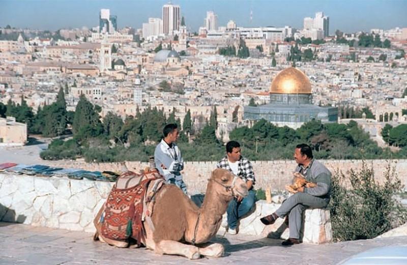 Ближневосточный узел: запутанные кризисы и неопределенное будущее