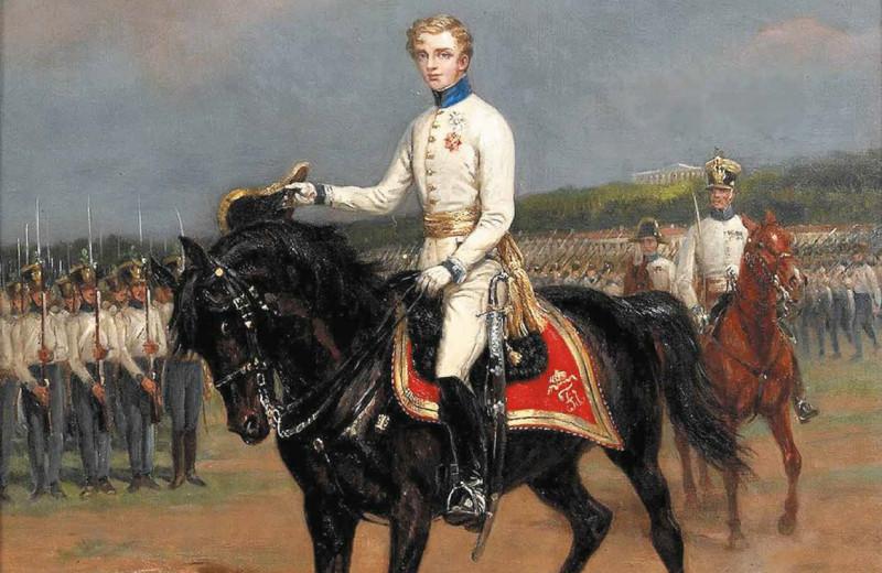 Наполеон Орлёнок: прерванный полёт