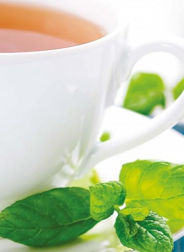 Что полезнее – зеленый иличерный чай?
