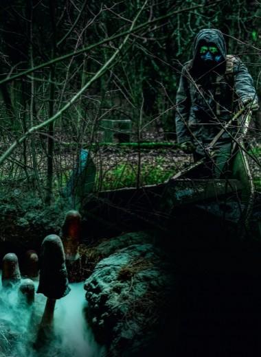 Черные грибы Чернобыля
