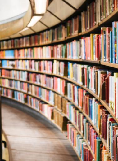 Новые книги для ценителей модернизма