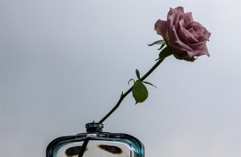 Королевство роз