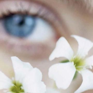 5 радостейдля органов чувств
