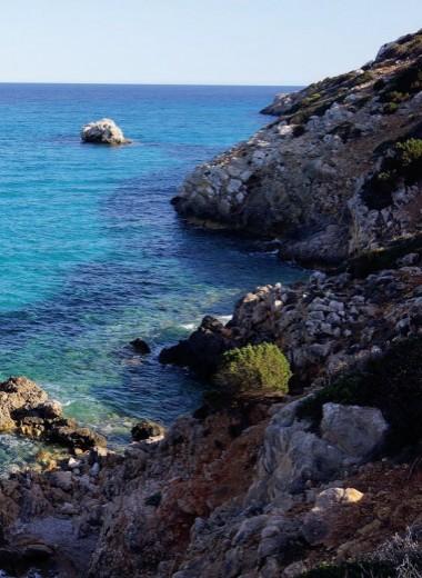 Сардиния. Инструкция по применению