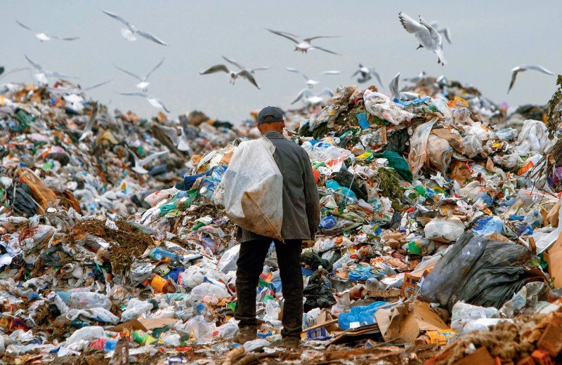 «Экология — это оружие»