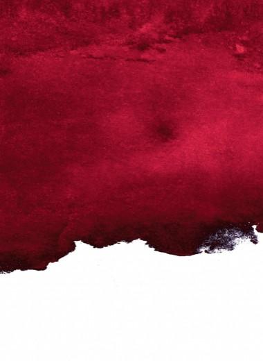 10 выдержанных истин о вине