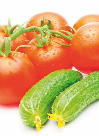 Огурцы & помидоры – дуэт или соло?
