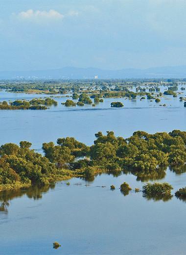 Большие амурские наводнения