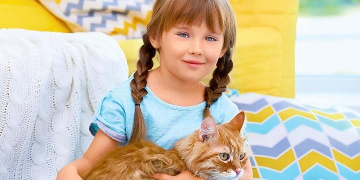 Ребята и котята
