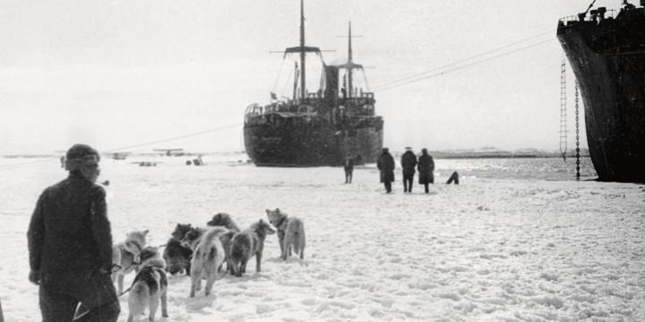 Подвиг во льдах и его последствия
