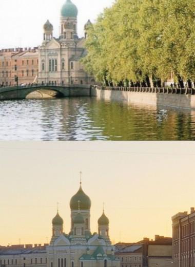 Как получилось, что из Петербурга исчезли деревья?