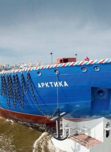 Новая «Арктика»