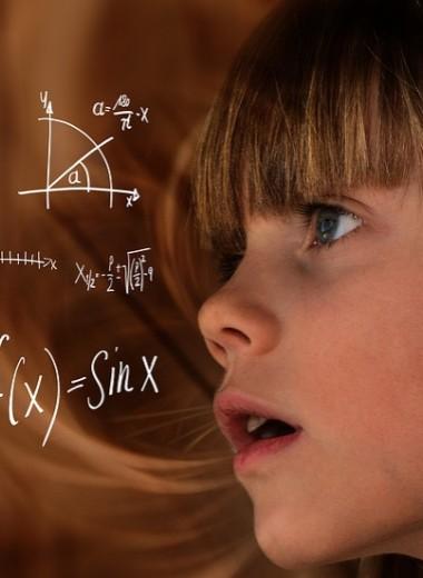«Два — это тоже в некоторой степени восемь»: как устроено чувство юмора у математиков