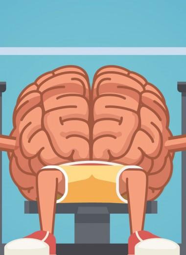 Фитнес без движения: как наш мозг сжигает много лишних калорий