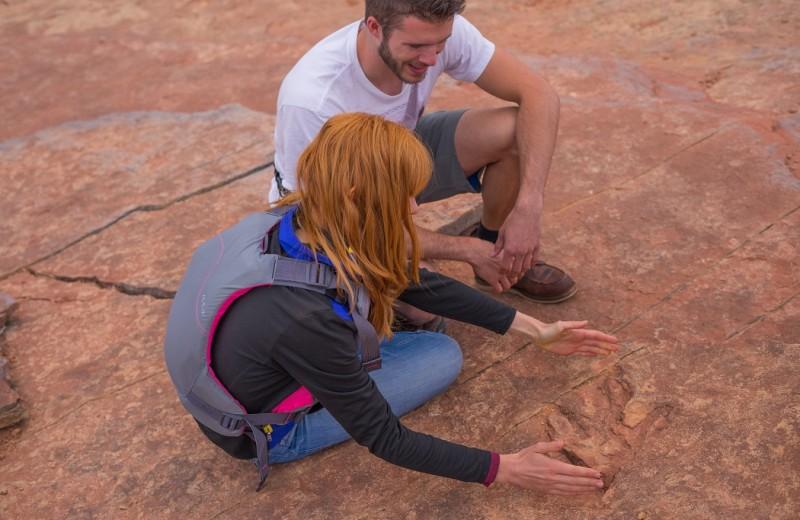 Это не просто камни: туристы по незнанию уничтожают следы динозавров