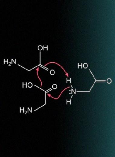 Глицин заполимеризовался при сдвиговой нагрузке