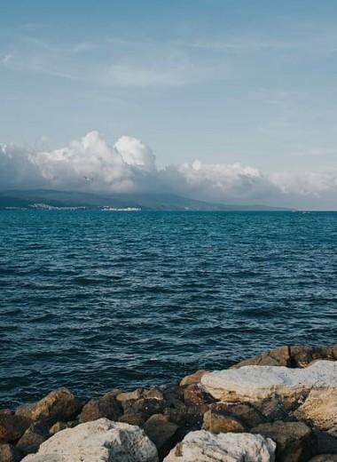 В глубоководье Черного моря нашли жизнь. Ранее эта зона считалась необитаемой