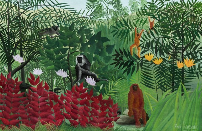 Что общего между приматами и шовинизмом