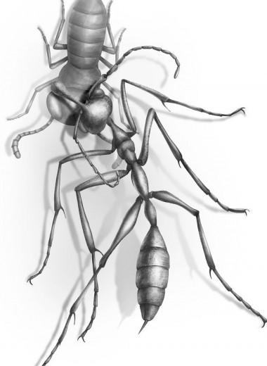 Доисторический адский муравей, застрявший в янтаре, мучает свою жертву уже 99 миллионов лет