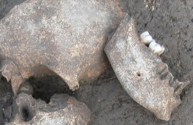 Кровавые и долговечные трофеи древних галлов