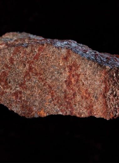 Как выглядит древнейший рисунок на планете?