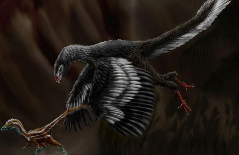 Древние птицы не могли высиживать яйца