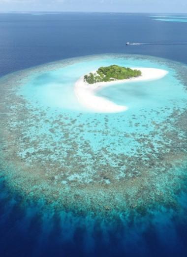 Коралловые острова вырастут в ответ на повышение уровня мирового океана