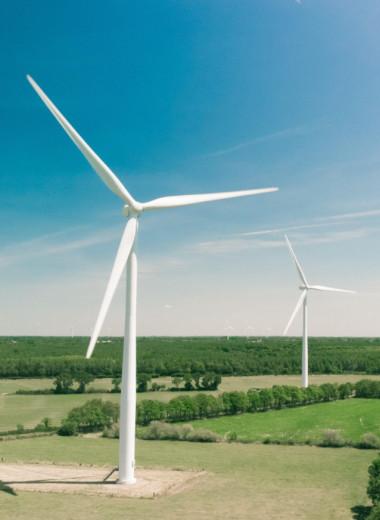 Государство, бизнес и банк: как развивается «зелёная» энергетика