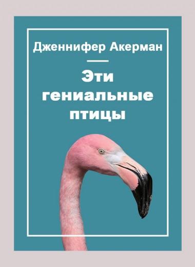 Эти гениальные птицы
