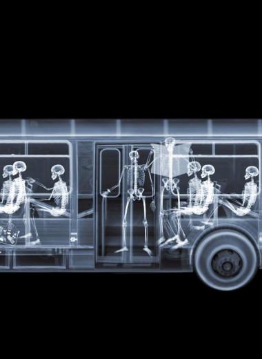 Рентгеновские снимки Ника Визи: автобусы и трактора в рентгене
