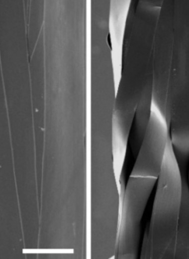 Полимерная оболочка помогла вытянуть волокна из металлического стекла