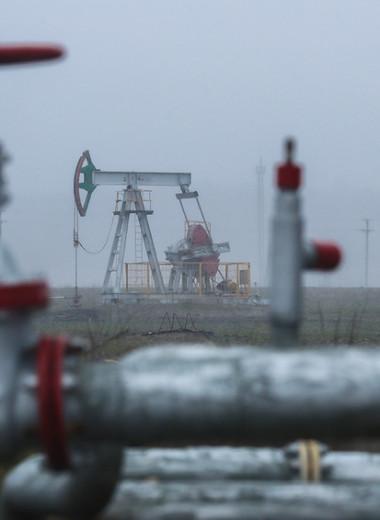«Зеленое» будущее для нефтегазового сектора: как развиваться компаниям в новых условиях
