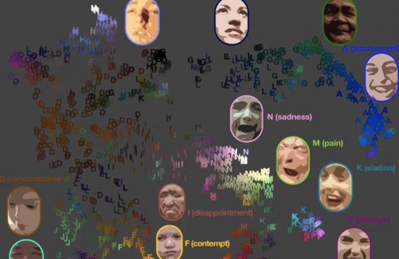 Шесть миллионов видеороликов указали на универсальность эмоциональных реакций