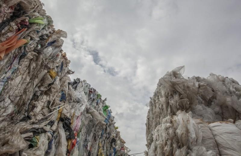 Ленинградская область стала первым в России регионом, отказавшимся от одноразового пластика