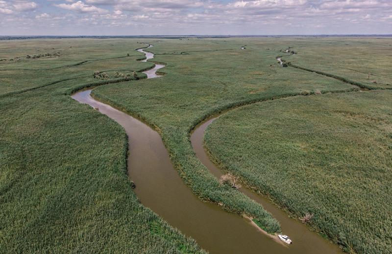 Цапли, ибис каравайка и бескрайние просторы: как в России развивается сельский заповедный туризм
