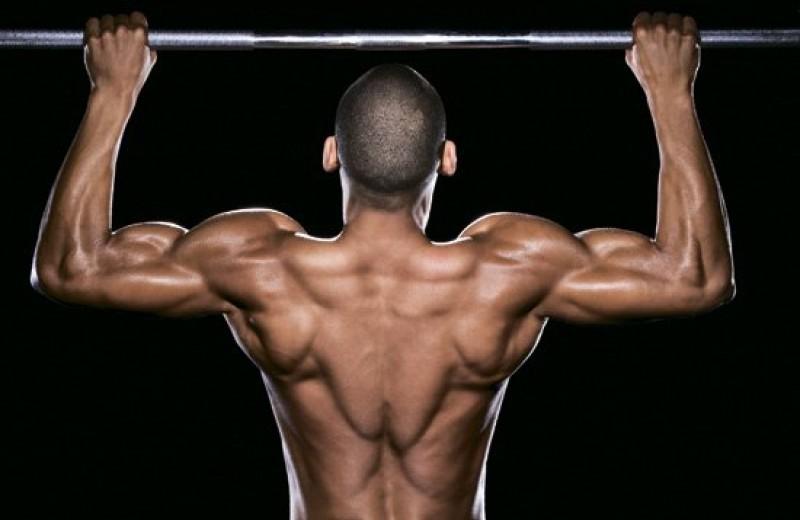 Мышцы спины: 5 основных ошибок и способы их исправления