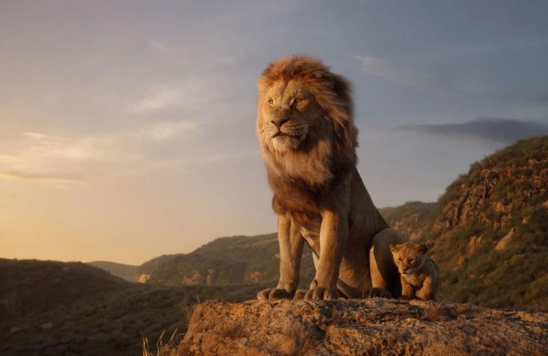 Услышь его рев: ремейк «Короля Льва» вышел очень вовремя. Объясняем почему
