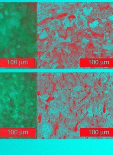Химики сделали конденсаторы из кирпичей