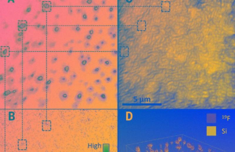 Соли пиперидиния повысили стабильность перовскитных солнечных батарей