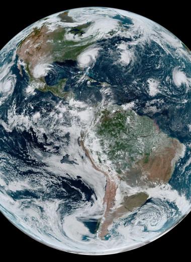 На восстановление биоразнообразия после антропогенного воздействия могут уйти миллионы лет