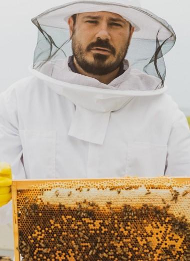 «Мы хотим сделать то, что Стив Джобс сделал с рынком смартфонов»: основатель бренда Le Souffle d'Adorre — о революции в индустрии меда