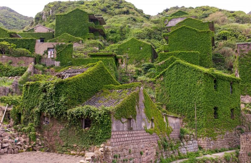 Природа захватила покинутую деревню: видео