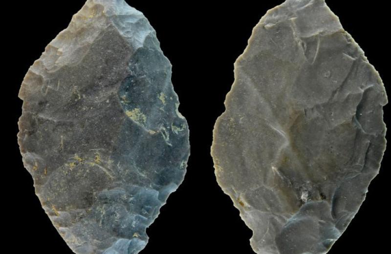 Немецкие археологи нашли неандертальское ударное оружие для охоты на оленей и лошадей